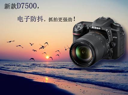 [新品上市]尼康 D7500 18-140mm单反套机